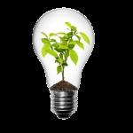 Nijs Lichtprojecten B.V. Logo